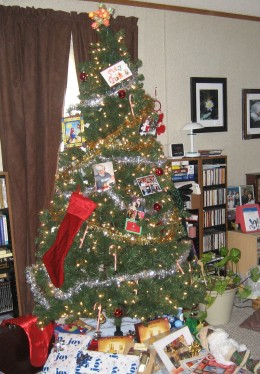Our Christmas Tree 2011