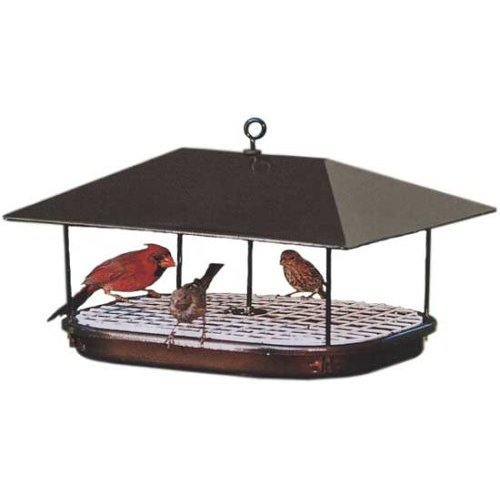 Duncraft 15401 Champion Squirrel Blocker Platform Feeder