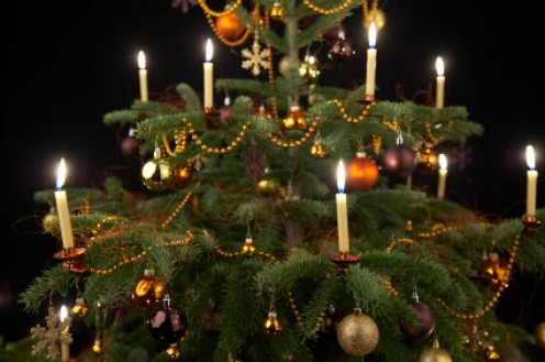 In retrospect of christ mass christmas trees and the - Traditional german christmas tree decorations ...