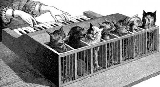 An illustration of a cat organ, what on Earth were they thinking?