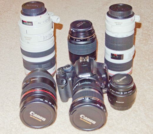 A collection of Canon lenses for all your photographic needs