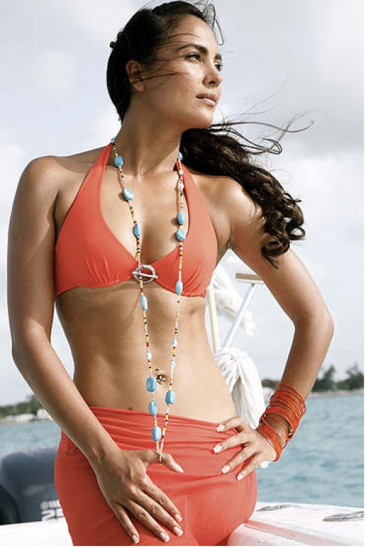 Lara Dutta before pregnancy