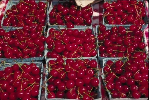 Delicious Fresh Cherries!