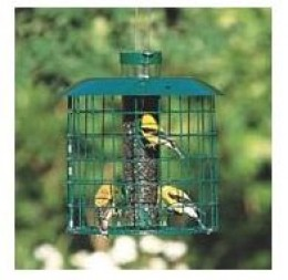 Duncraft 18814 Squirrel Proof Accent Selective Feeder