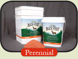 Buck Fest Deer Plot Seed