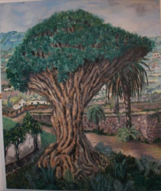 Dragon Tree in Icod de los Vinos by Monica Biggs