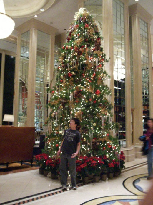 Christmas with my brother in Union Square in San Francisco
