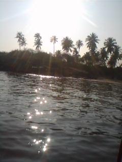 Splendid Serene Beautiful Nature