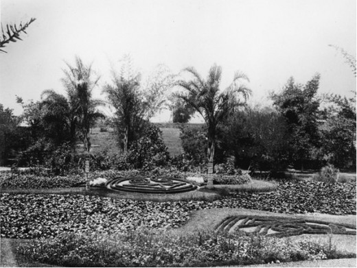 Parterre Ponds & Flower Beds Circa 1889.