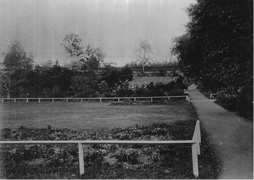Trial Planting Beds Circa 1889.