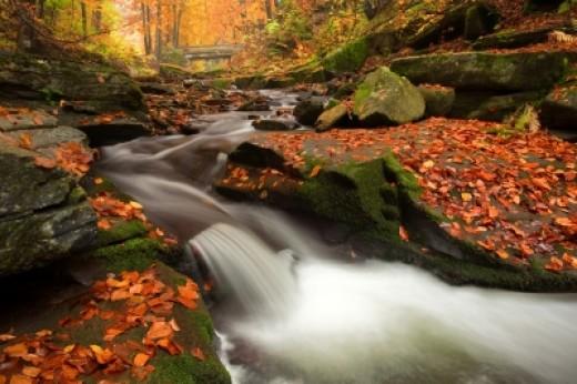 River Stream as Passive money