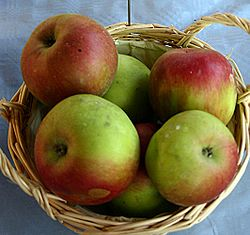 Apple Recipes often call for Ida Reds, because they are sweet and sour.  Developed in Moscow, Idaho, their name is a pun.