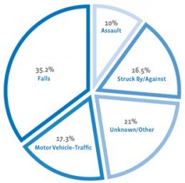 Current Pie Chart Showing Leading Causes of TBI.