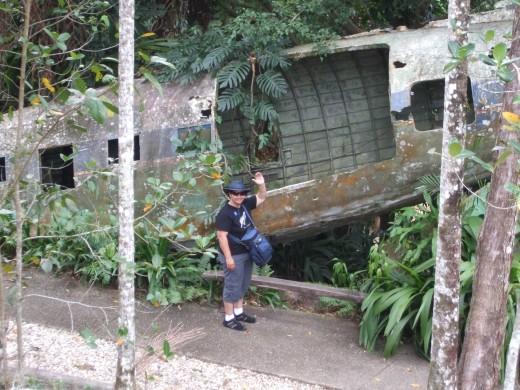 The plane wreck in the Kuranda rainforest.