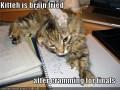 Exam Preparation: Revision - How do I get an A?