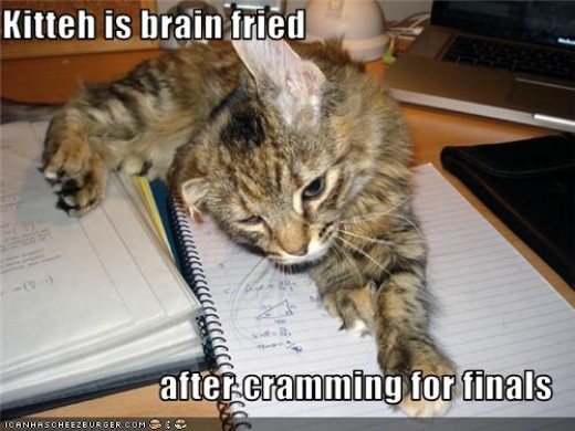 It doesn't have to be this way. Cramming is painful, demotivating and WORST OF ALL extremely ineffective. Do little and often - FROM THE START!
