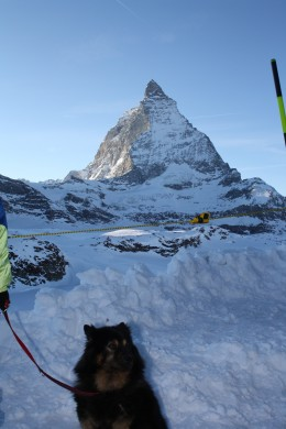Benda in Trockener Steg Station with backview of Lady Matterhorn, Switzerland