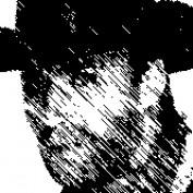 manu6076 profile image