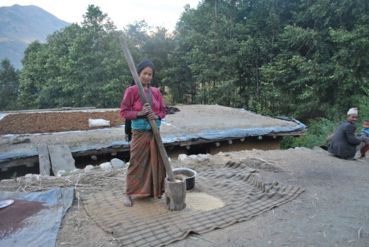 This is a traditional cereal grinding method, which is a common scene in Nepal.