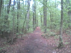 Best Hiking Trails in Greater Boston