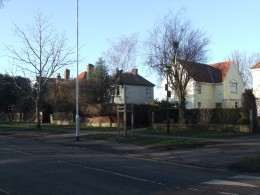 Detached houses on The Avenues, opposite Heigham Park