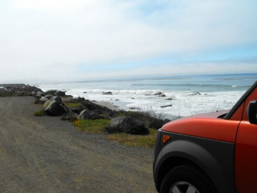 The drive was beautiful with many pull offs to check out the ocean and the view