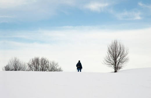 Solitude on snowshoes