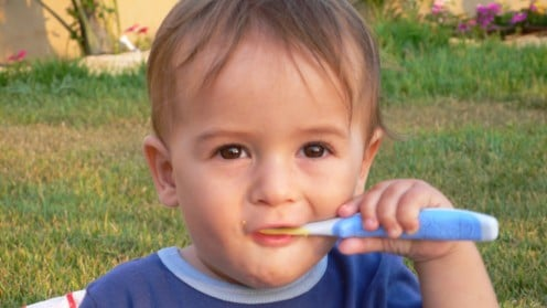 Babies can play with soft toothbrushes before or after an adult helps them clean their teeth
