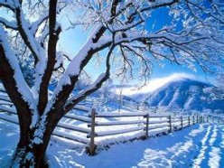 A Winters Touch