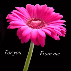 For you. From me.