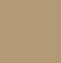 Starfish PANTONE® 16-1120
