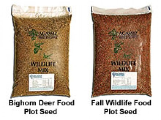 Food Plot Seeds