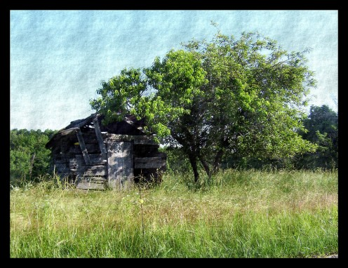 Little barn has seen better days.