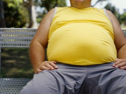 Fat Chance: An Obesity Lawsuit Survey