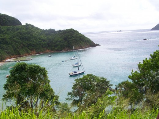 "Tobago ""Blue Waters"""