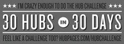 Building a Viable Online Business: My 60 Day Hub Challenge Journal