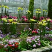 Minn.purplerose profile image