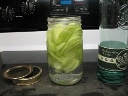 Jar O' Vodka