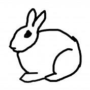 Brainy Bunny profile image