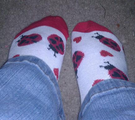 This year's Valentine socks feature ladybugs.