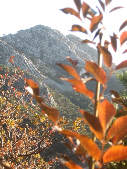 NP Paklenica, Velika Paklenica Canyon, Velebit