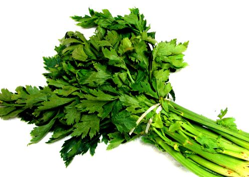 When cooking with celery, incorporate the leafy parts because they are very high in antioxidants.