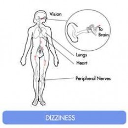 Dizziness affects several body systems