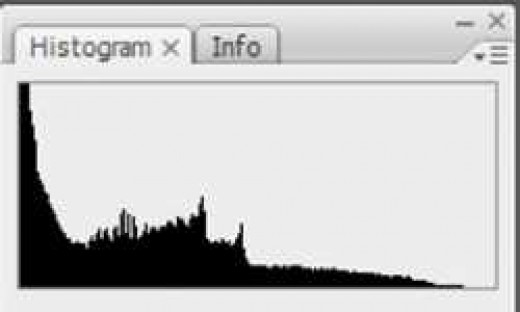 This is a histogram that shows an under exposed image.  This photo will look overly dark.