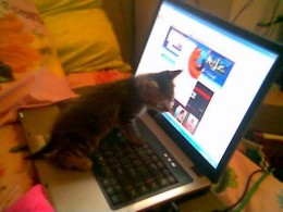 Rori at four weeks old, using a laptop for the first time