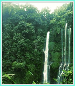 Sekumpul Waterfall, which is a main reason to visit Sekumpul Village.
