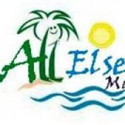 allelsematters profile image