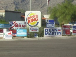 Campaign Signs crowd the roadside at election time.