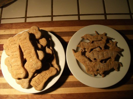 Biscuit cut outs - Dog Bones, Dachshund