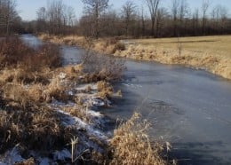 Frozen creek